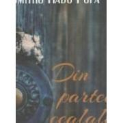 Din partea cealalta Vol. 3 - Dumitru Radu Popa