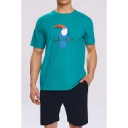 Atlantic Toucan Pyjama Set Short Sleeved T Shirt & Shorts Loungewear Teal Green NMP-317