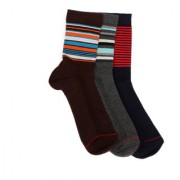 Soxytoes Summer Pack Multi-Coloured Cotton Ankle Length Pack of 3 Pairs Unisex Casual Socks (SOSN0143)