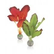 biOrb malá hedvábná rostlina set zelená - červená