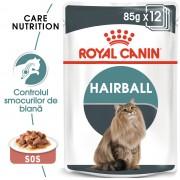 Hairball Care Gravy 12x85g