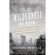 The Wilderness of Ruin: A Tale of Madness, Fire, and the Hunt for America's Youngest Serial Killer, Paperback/Roseanne Montillo