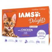 12x85g IAMS Delights Kitten em molho Frango