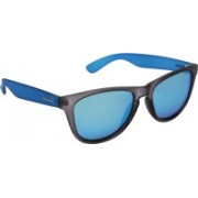 Polaroid Wayfarer Sunglasses(Blue)