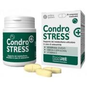 Innovet Italia Srl Condrostress + 30cpr Mastic