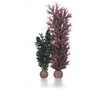 biOrb rostlina mořská perla tmavě zelená