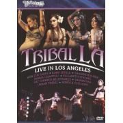 Bellydance Superstars: Tribal L.A. - Live In Los Angeles [DVD]