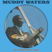 It-Why Muddy Waters - At Newport - Vinile
