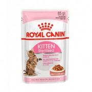 Royal Canin Kitten sterilised Salsa