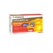 ArkoReal Geleia Real Vitaminada Sem Açúcar 20 Âmpolas