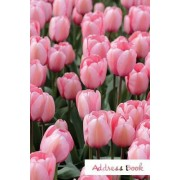 Address Book.: (Flower Edition Vol. E86) Pink Tulip Design. Glossy Cover, Large Print, Font, 6 X 9 for Contacts, Addresses, Phone Num