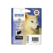 Epson T0969 Epson R2880 Licht Grijs