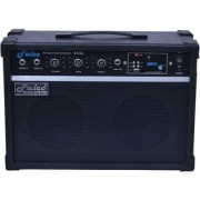 PALCO Guitar Amplifier with USB FM
