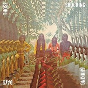 Those Shocking Shaking Days: Indonesian Hard Psychedelic Progressive Rock & Fun [LP] - VINYL
