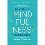 Real World Mindfulness for Beginners: Navigate Daily Life One Practice at a Time, Paperback