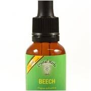 Beech (Fag) 10ml