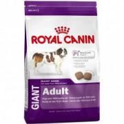 Hrana uscata pentru caini Royal Canin Giant Adult 15Kg