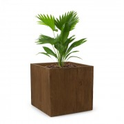 Timberflor Vaso de plantas 55 x 50 x 55 cm Fibra de vidro interna/externa marrom