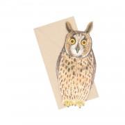 Dille&Kamille Carte 3D et enveloppe, hibou moyen-duc