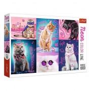 Puzzle Trefl 1000 piese Superi pisici in culori neon
