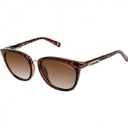 David Blake Brown Cateye Gradient Polarised UV Protected Sunglass