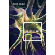 Synaptic Self: How Our Brains Become Who We Are, Paperback