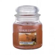 Yankee Candle Warm Desert Wind 411 g vonná sviečka unisex