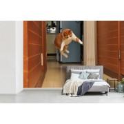 Fotobehang vinyl - Kat springend naar speelgoed breedte 330 cm x hoogte 220 cm - Foto print op behang (in 7 formaten beschikbaar)