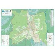 Harta Municipiului Moreni DB (print digital) - sipci de lemn