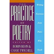 The Practice of Poetry: Writing Exercises from Poets Who Teach, Paperback/Robin Behn