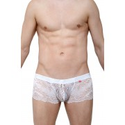 Petit-Q Ereac Lace Boxer Brief Underwear White PQ180101