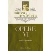 Opere Vol. 6 - Mircea Nedelciu
