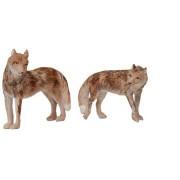Coyote - Noah's Pals (4 Pack)