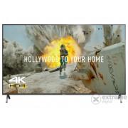 Televizor Panasonic TX-65FX700E UHD SMART LED
