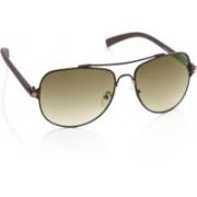 Rockford Oval Sunglasses(Brown)