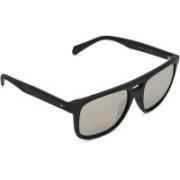 Fossil Wayfarer Sunglasses(Silver)