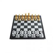 Hongyushanghang Ajedrez internacional, principiantes magnéticos Primeros pasos Juego de ajedrez, Iluminación infantil Ajedrez plegable (Oro + Plata, 25 * 25 * 2 cm) Las piezas de ajedrez no son fácile