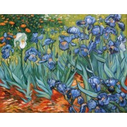 """Pictura """"Irisi"""" -reproducere Van Gogh"""
