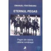 Eternul pegas. Pagini din istoria calariei romanesti - Emanuel Fantaneanu