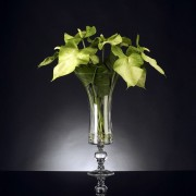 Aranjament floral ANTHURIUM
