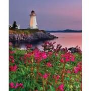 Springbok Lighthouse at Sunset 1000 Piece Jigsaw Puzzle