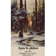 Apus in padure