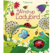 Wind-Up Ladybird, Hardcover