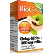 Ginkgo biloba + 1000 mg lecitin_90 db