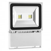 Lightcraft Alphalux Snow LED-Flutlicht Fluter Strahler Kaltweiß Outdoor IP65 100