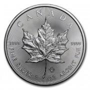 Maple Leaf stříbrná mince 1 Oz