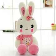 """Judy Dre am Cartoon Animals Plush Rabbit Toys-Judy Dre am Cute Children's Toy PP Cotton Doll Soft Pink/Green Rabbits Toys for Kid 39-"""""""