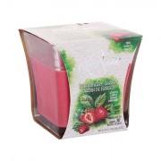 White Swan Strawberry Garden vonná svíčka 283,5 g