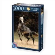DToys Puzzle 1000 Horses 02 (07/65988-02)