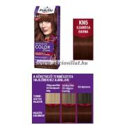 Schwarzkopf Palette Intensive Color Creme KN5 Szamóca Barna krémhajfesték